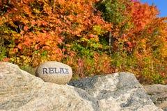 Ontspan met Autumn Trees Royalty-vrije Stock Afbeeldingen