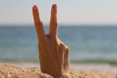 Ontspan op een strand Stock Foto