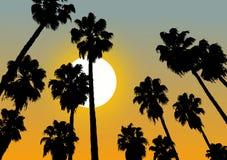 Ontspan zonsondergangscène Stock Foto's