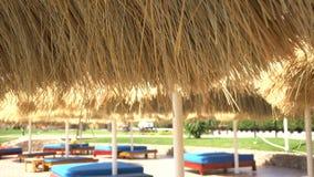 Ontspannend streek dichtbij zwembad stock footage