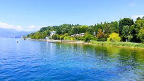 Ontspannende gang tussen bomen en meer Lagomaggiore Italië royalty-vrije stock fotografie