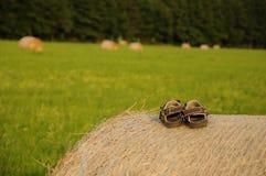 Ontspanning in de zomertijd Stock Foto