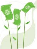 Ontspruitend Geld Stock Afbeelding