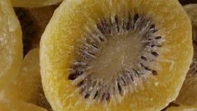 Ontwaterd kiwien biovoedsel stock videobeelden