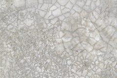 Ontwerp van cementmuur en vloer voor patroon en achtergrond Stock Afbeelding