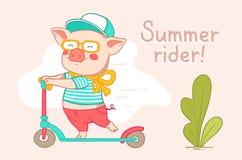 Ontwerp van de kleuren het vlakke stijl van het stedelijke varken van de karakterruiter voor Web, Si stock foto