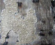 Ontwerp van houten textuurachtergrond Royalty-vrije Stock Foto's