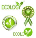 op ecologie betrekking hebbende grafische elementenuitrusting Stock Afbeelding
