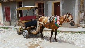 Ontwerppaard met aanhangwagen op het werk in Trinidad, Cuba stock afbeelding