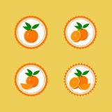 Ontwerpstickers met Sappige Sinaasappel Royalty-vrije Stock Afbeelding
