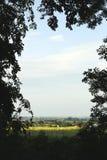 Ontworpen landschap Royalty-vrije Stock Afbeeldingen