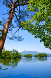 Onuma National Park in summer in Japan. Royalty Free Stock Image