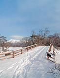 Onuma National Park in Winter Stock Images