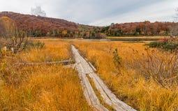 Onuma pond in Hachimantai mountain area. Royalty Free Stock Photos