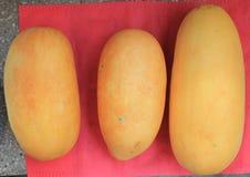 Onverwachte meloen Stock Fotografie