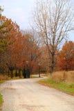 Onvolledige Weg in de Herfst Stock Foto
