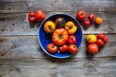 Onvolmaakte tomaten voor het organische tuinieren, gezonde landbouw of veganistvoedsel Royalty-vrije Stock Foto's