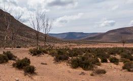 Onvruchtbaar Land stock afbeelding