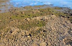 Onvruchtbare Aarde Droog Gebarsten Aarde Gebarsten modderpatroon Grond in barsten Gespleten textuur Droogteland Milieudroogte Stock Fotografie