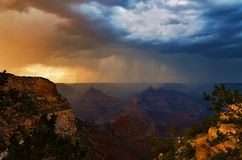 Onweer in Grand Canyon Stock Foto