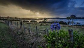 Onweer over de Manukau-Haven Stock Afbeeldingen