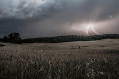 Onweer over het bos Royalty-vrije Stock Foto