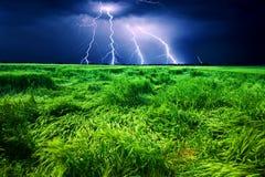 Onweer over tarwegebied Stock Foto