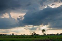 Onweer samen met de zon wordt gevormd die Royalty-vrije Stock Afbeelding