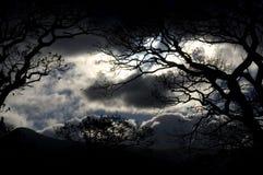 Onweerswolken stock afbeeldingen