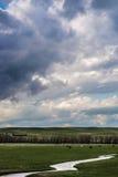 Onweerswolken boven gebied van groen gras Royalty-vrije Stock Foto's