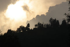 Onweerswolken over bos Stock Foto's