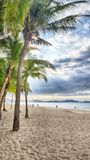 Onweerswolken in palmen op de overzeese kust royalty-vrije stock foto