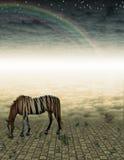 Onwerkelijk Paard in landschap stock illustratie