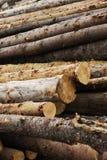 Onwettig registreren, houten close-up royalty-vrije stock afbeelding