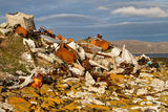 Onwettige afvalverwijdering Royalty-vrije Stock Foto