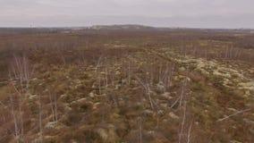 Onwettige ambermijnbouw Gevolgen van het amber graven bij de herfst stock videobeelden