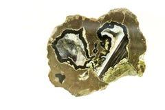 Onyksowy agat - odizolowywa białego tło Obraz Stock