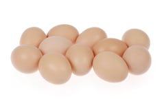 Onze ovos Foto de Stock Royalty Free