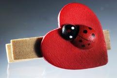 Onzelieveheersbeestje op een houten klem Royalty-vrije Stock Fotografie