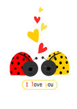 Onzelieveheersbeestje twee in liefde Royalty-vrije Stock Afbeeldingen