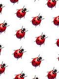 Onzelieveheersbeestjes royalty-vrije illustratie