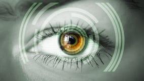 Oog die digitale informatie bekijken Stock Foto