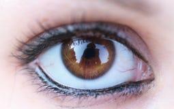 oog macro Stock Afbeeldingen
