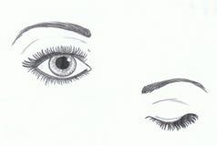 Oog open en gesloten oog Stock Fotografie
