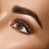 Oog van de schoonheids het donkerbruine vrouw met perfecte make-up stock afbeelding