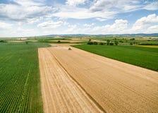 oogst stock afbeelding
