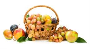 Oogst. assortiment van fruit in een mand op wit Royalty-vrije Stock Foto's