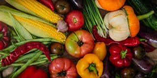 Oogst, de Herfst Panoramische inzameling van verse gezonde vruchten en groenten Gezonde het eten achtergrond De achtergrond van g royalty-vrije stock afbeelding