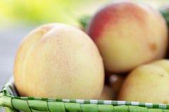 Oogst rijpe perziken stock foto