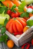 Oogst seizoengebonden groenten in een houten verticale doos, royalty-vrije stock foto